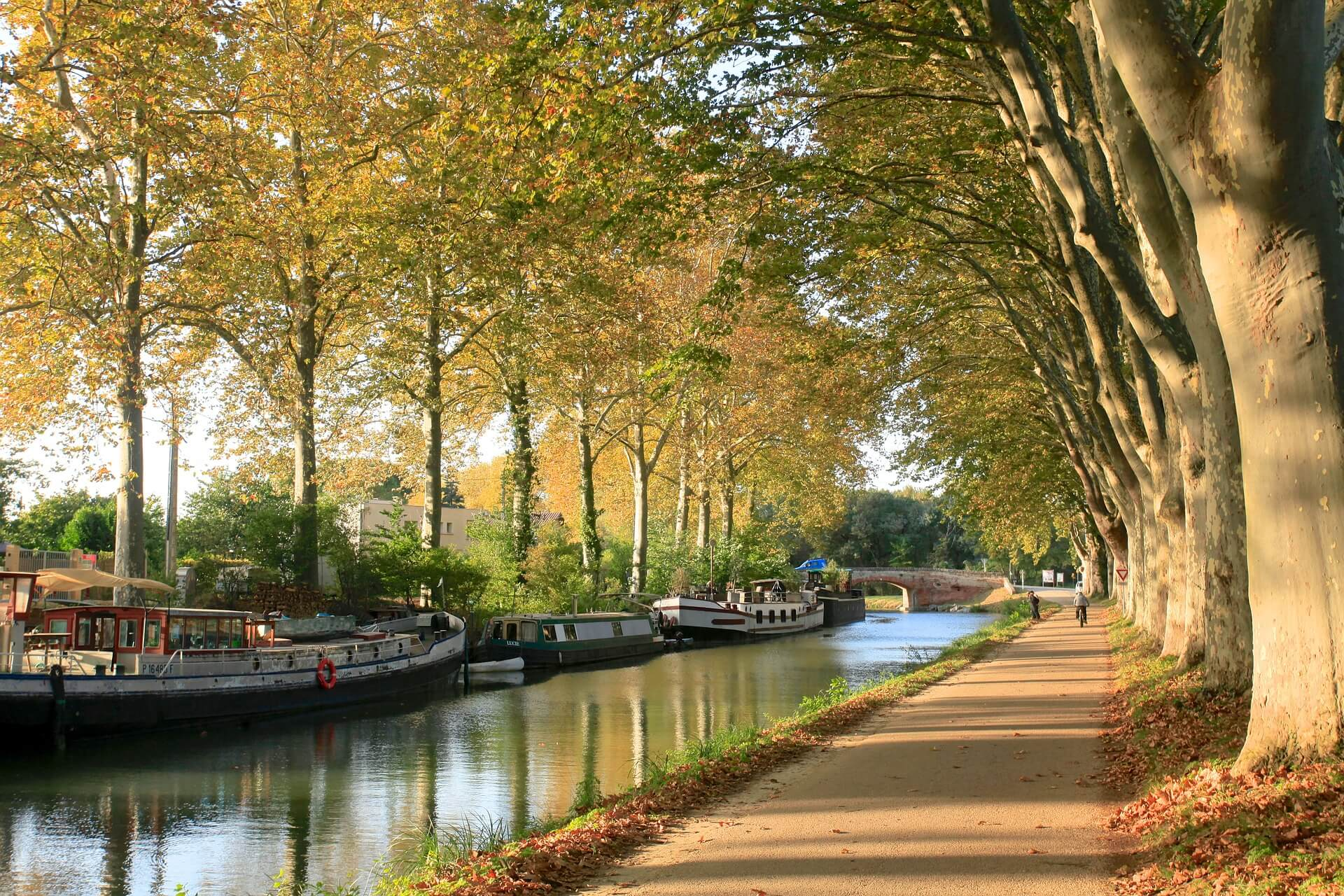 canal-du-midi-agence-de-location-de-van--toulouse-freed-home-camper